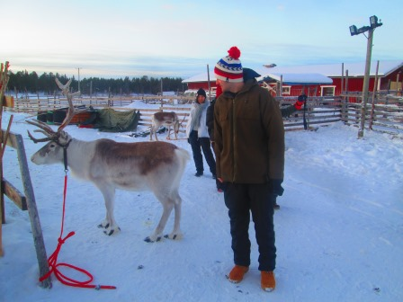 I try to touch the grouchy reindeer