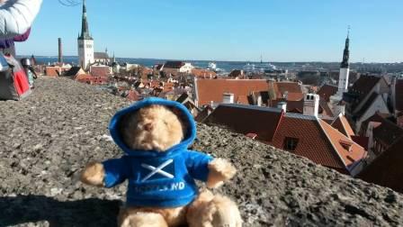 Bonnie the Bear overlooks the city of tallinn