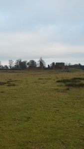 A picture of the ruins in Bradgate Park