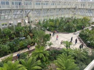 A photo of the inside of the temperature glasshouse
