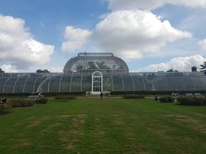 A photo of the Palm House