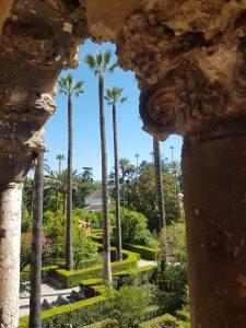 A photo of gardens
