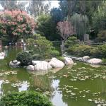 Japanese Gardens for Self-Defense Class :)