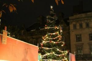 christmas light 3