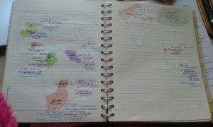 Exhibit C: My first year map of case studies