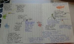 Exhibit D: My second year map of case studies