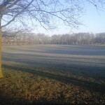 Frosty morning in Vicky Park