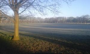 Frosty morning in Vicky Park