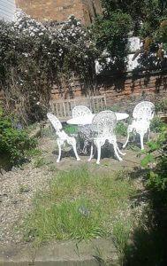 My slightly overgrown but lovely garden last year