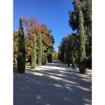 Erasmus 8: How to spend a public holiday in Madrid