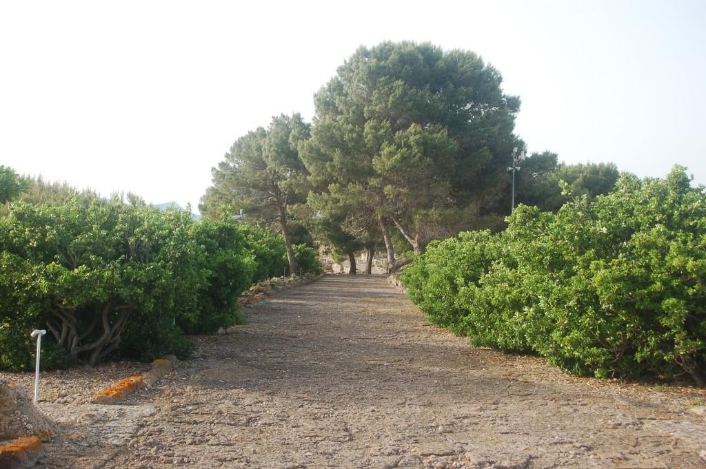 Roman Road in Nora, Sardinia 2015