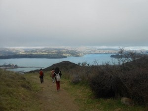 Even with the low clouds over the Port Hills, you can just about make out the amazing views looking down over Lyttleton and the harbour!