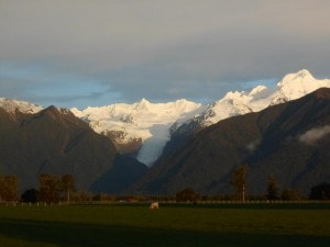 This is the Fox glacier just as the suns setting.