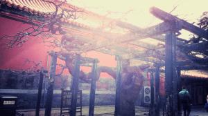 Gardens at the Forbidden City