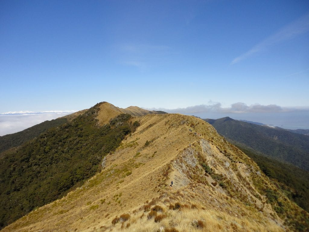Walking along a ridge on Day 2 with the Southern Alps on the left and the sea on the right