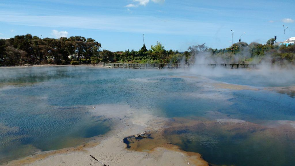 A steaming pool in Kuirua Park, right in the centre of town