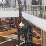 Christmas the Australian way