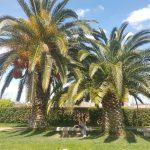 Mérida, Extremadura Spain